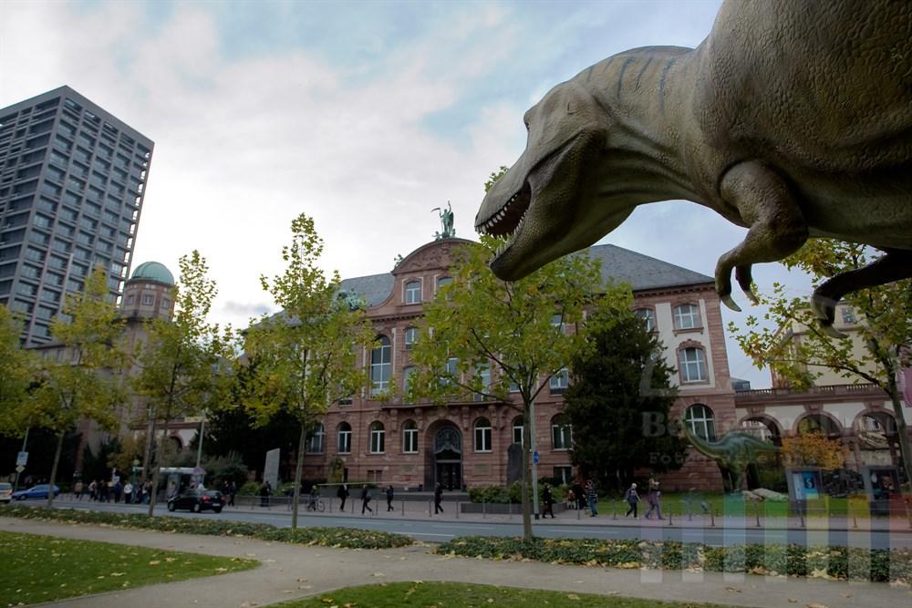Nachbildung eines Tyrannosaurus Rex vor dem naturkundlichen Senckenberg-Museum in Frankfurt am Main