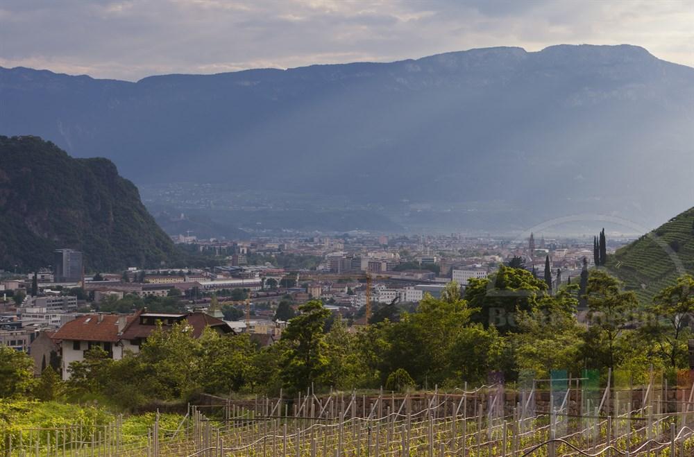 Blick aus den Weinbergen am Ritten auf die Stadt Bozen (Bolzano) im abendlichen Sonnenlicht (kurz vor einem heftigen Gewitter)