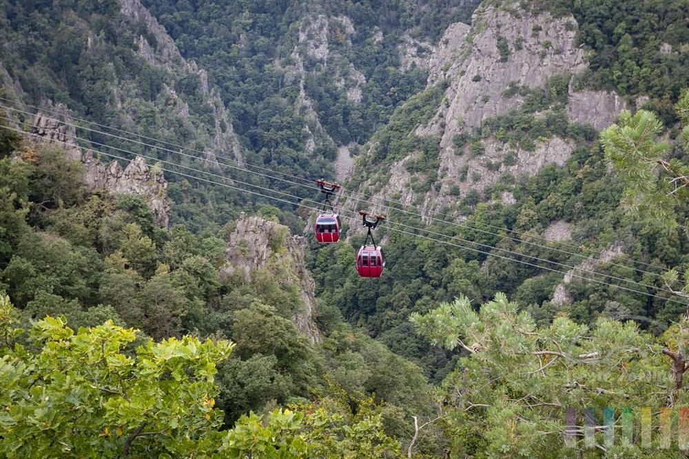 Rote Kabinen der Seilbahn zum Hexentanzplatz in Thale/Ostharz