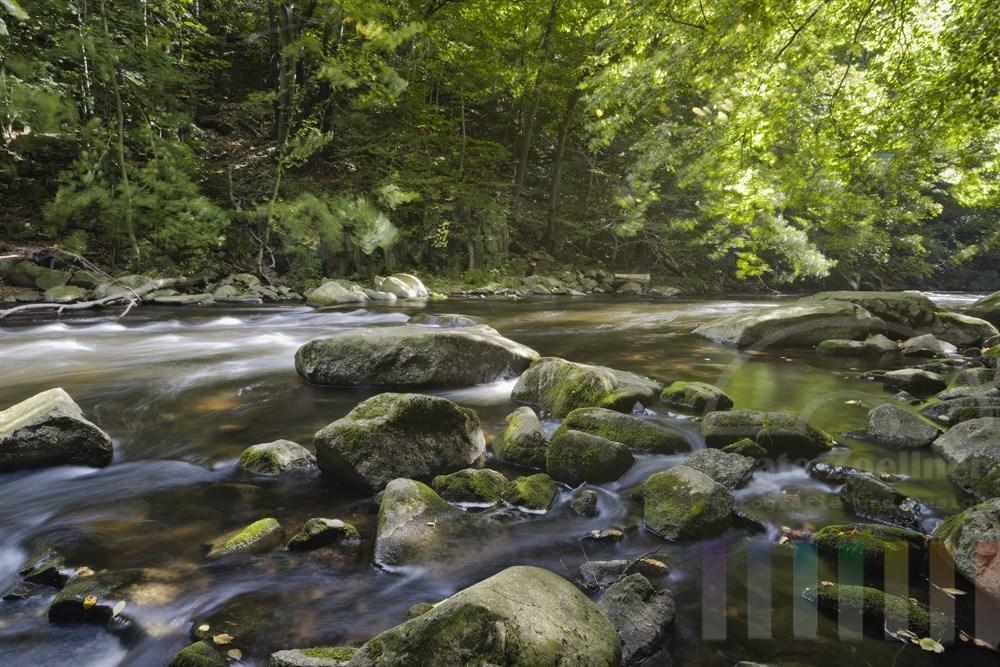 Das Flüsschen Bode im Harz nahe dem Städtchen Thale