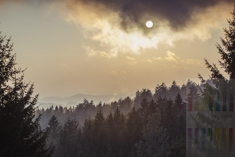 Lichtstimmung im Bayerischen Wald, als sich nach einem Regenschauer die Sonne am frühen Abend wieder durchsetzte und der feuchte Dunst gen Himmel stieg
