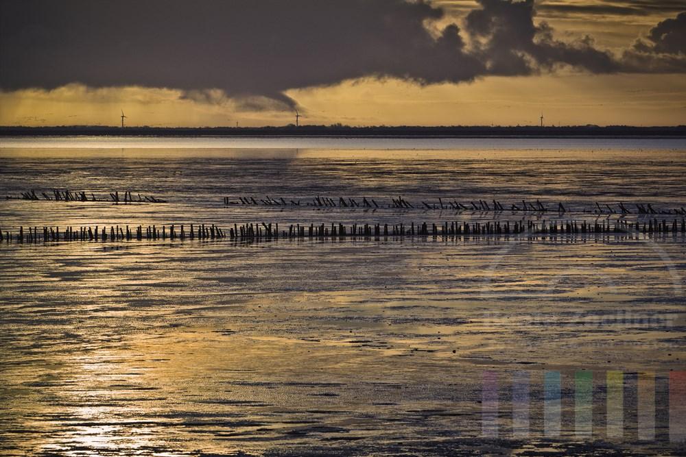 Blick  ueber das Wattenmeer zum daenischen Festland (vom Strassendamm zur Insel Roemoe)